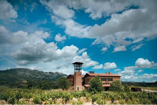 Adéntrate en el mundo del vino, visita guiada a la Bodegas Arabarte, cata de vinos y menú especial